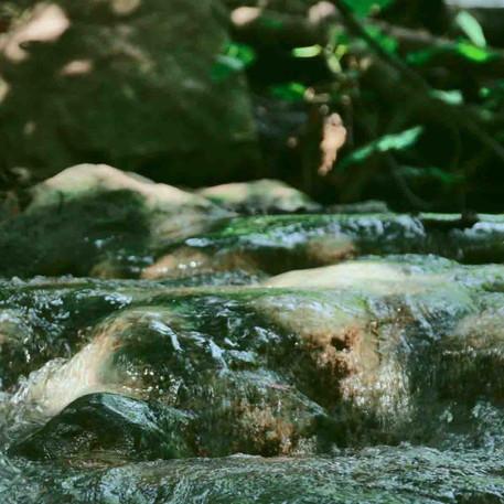 זרימה בין הסלעים