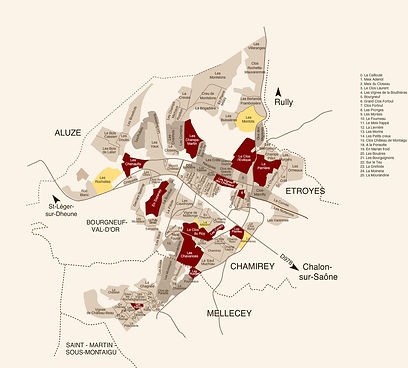 Localisation of the vineyards.jpg