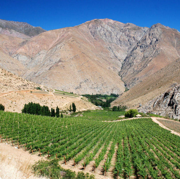 Maipo Valley