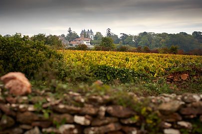 Chateau de Chamirey.vignes + chateaujpg.