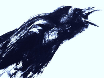 The Crow and the Kingfisher