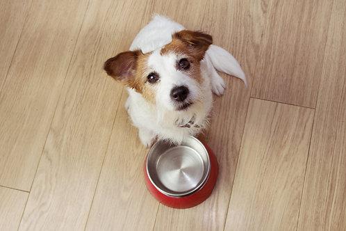 Fertigfutter Ratgeber für Hunde
