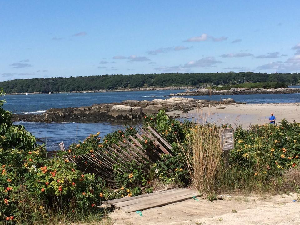 Fowle's Beach