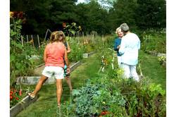 Community garden event 2 v2