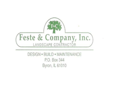 Feste & Company, Inc