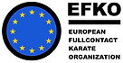 logo-efko.jpg