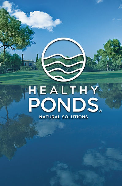 Healthy Ponds Landing Page Column.jpg