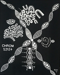 Chrom S212+
