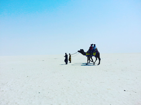 Places to Visit in Kutch during Rann Utsav
