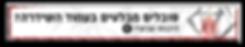 דיקור סיני לבלט דיסק, טיפול בדיקור לכאבי גב