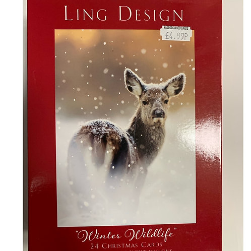 Winter Wildlife  24 cards/8 designs