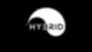 hybrid-surfboard-logo-custard-point.png