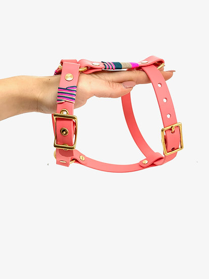 Harness Bangkok Girl