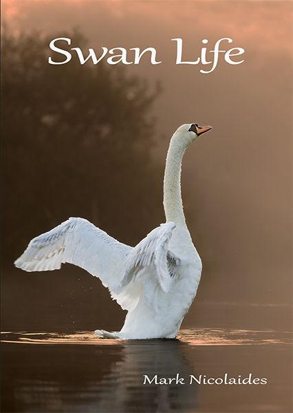 Swan life book