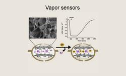 __Vapor Sensors2