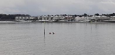 Swimming in the Irish Sea Jan. 2021.jpg