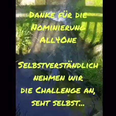 Video Challenge - Ranzadrialer