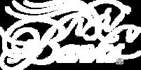 Banks_Logo_White_LowRes_72.png