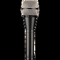 swamp mic.png