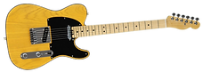Swamp Electric Guitar.png