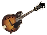 Swamp Mandolin.png