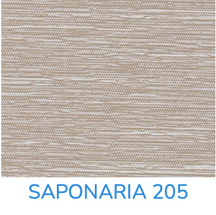 SAPONARIA 205