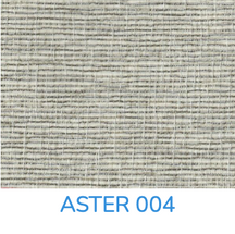 ASTER 004