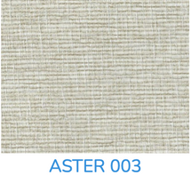 ASTER 003