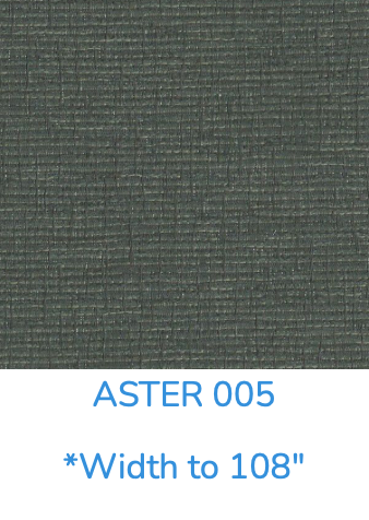 ASTER 005