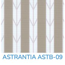 ASTRANTIA - LIGHT FILTERING