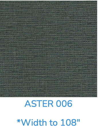 ASTER 006