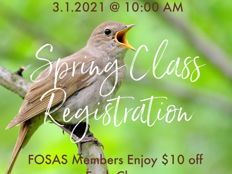 Spring Class Registration Opens on March 1!
