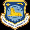 nasic logo.png