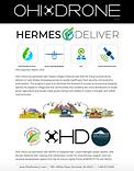 Hermes Deliver.png