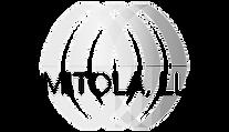 AMITOLA Logo