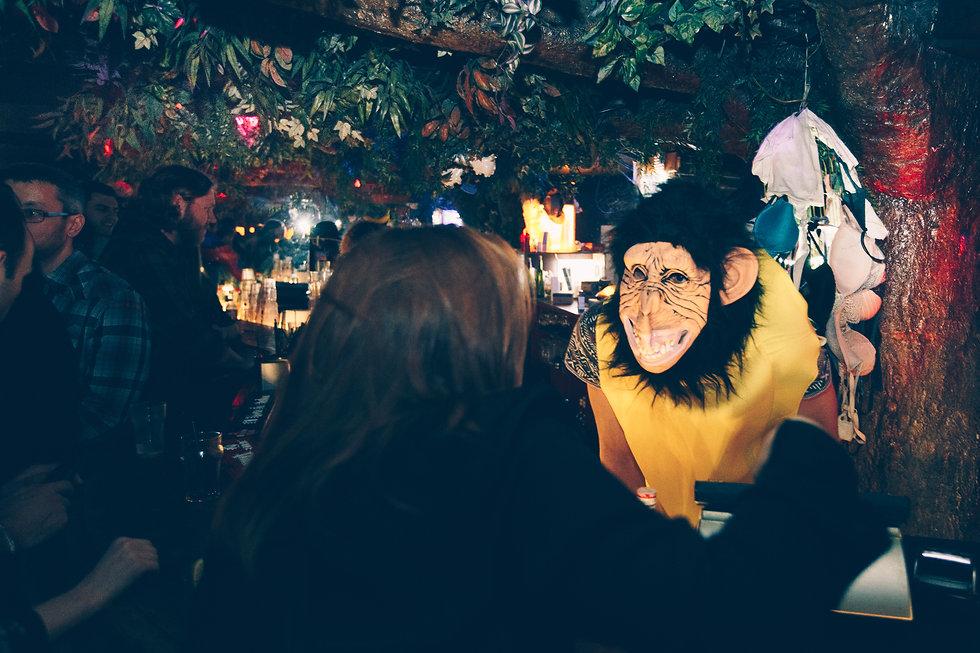 Yellow Mad Monkey-7.jpg