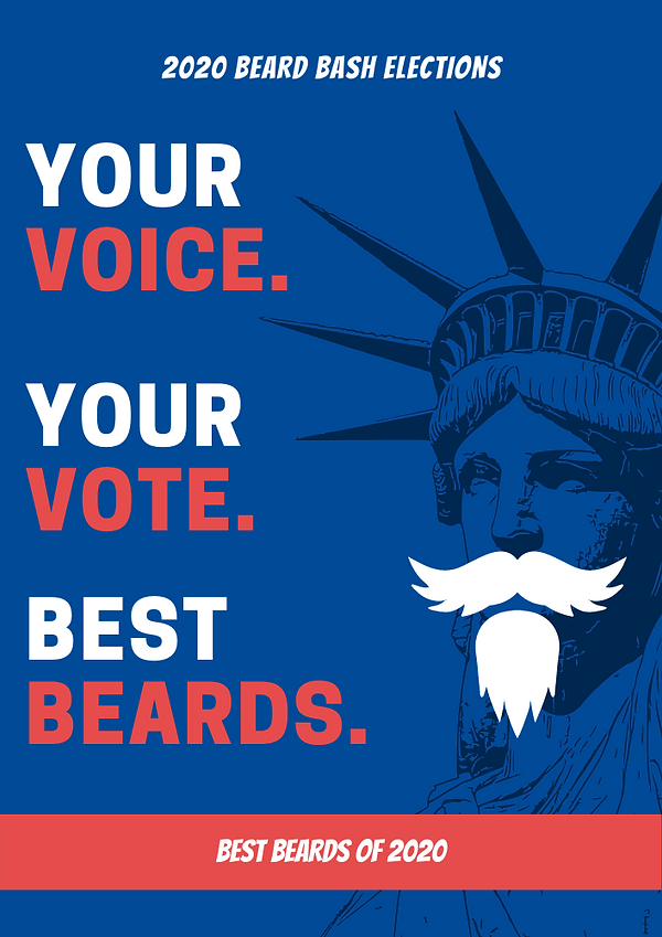 Blue and Red Voter Education Flyers.png