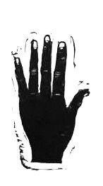 sf hand .jpg