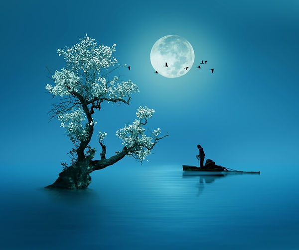 moon-shines-beautifully-on-the-dream-country-lighting-up-the-picture-id1071653588.jpg