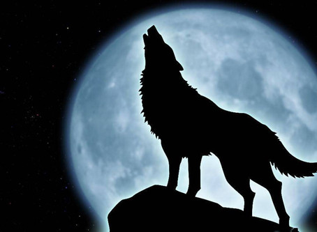 La pleine lune du Loup.