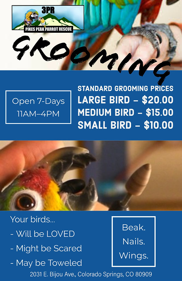 Standard Grooming Prices.jpg
