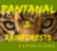 Pantanal & Raiforests Expeditios