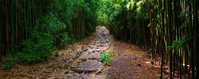 Journey's Beginning - 3KForWeb.jpg