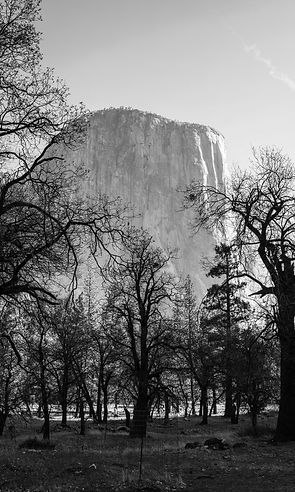 Walking in Majesty - El Capitan-BW-12203