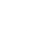 Insurance-icon.png