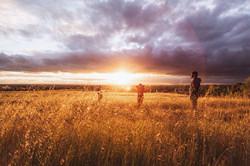 Life-of-Pix-free-stock-photos-wheat-sunset-people-jordanmcqueen