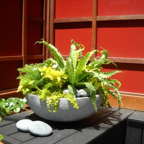 Contemporary Planter