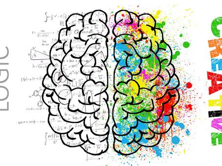 A importância do uso dos sentidos para desenvolver treinamentos e pessoas