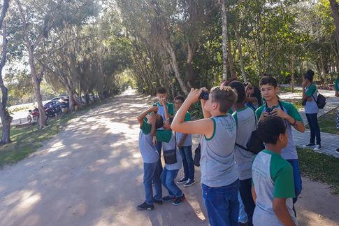 Passarinhando na Reserva
