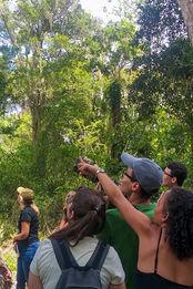 Campo de Observação de Aves